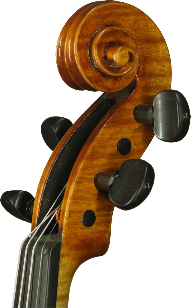 Guarneri-Modell, Schnecke